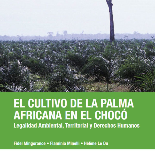 El cultivo de la palma africana en el Chocó